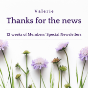 12 weeks of COVID-19 newsletters